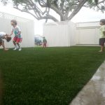 Synthetic Lawn Company Lakeside, Top Rated Artificial Turf Installation Company