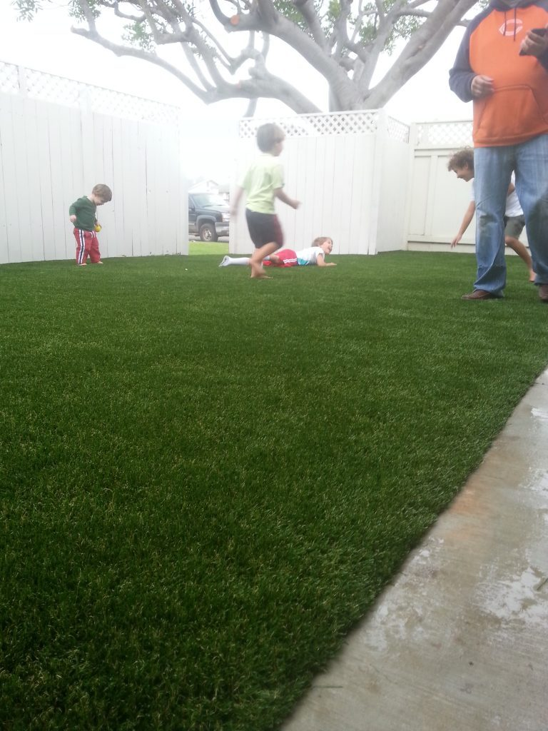 Synthetic Lawn Playground Installation Lakeside, Best Artificial Turf Backyard Playgrounds