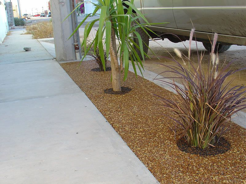 Porous Tree Well Installation Services Lakeside, Tree Well Maintenance and Cleaning